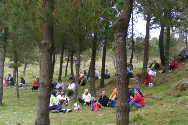 carrouchas23165AF63-33A9-26AE-F210-5C2792E2EA32.jpg